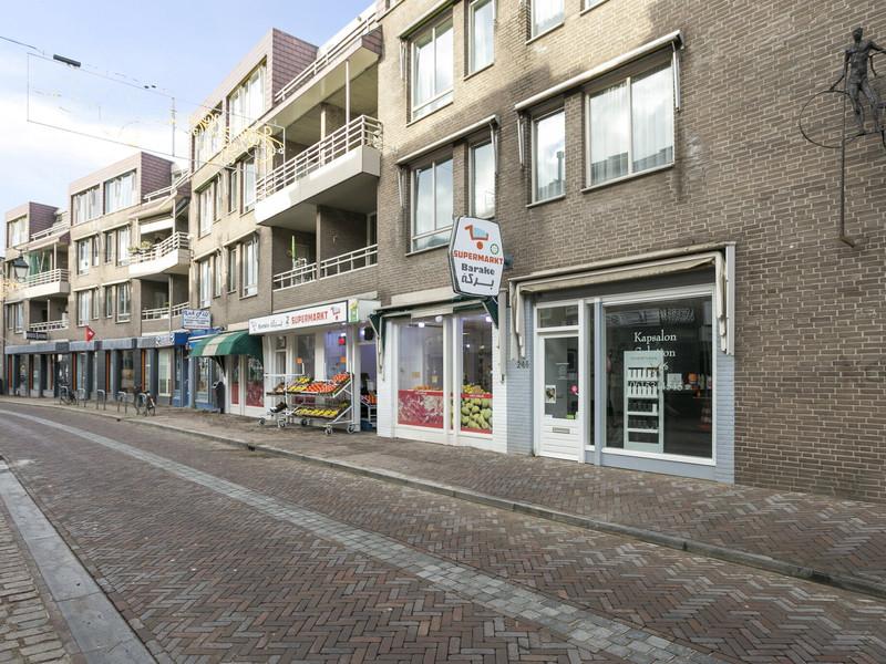 Haagdijk 246