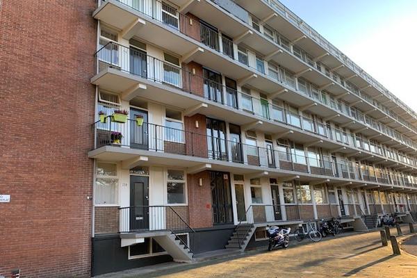 Rijnbeekstraat 260 - VENLO