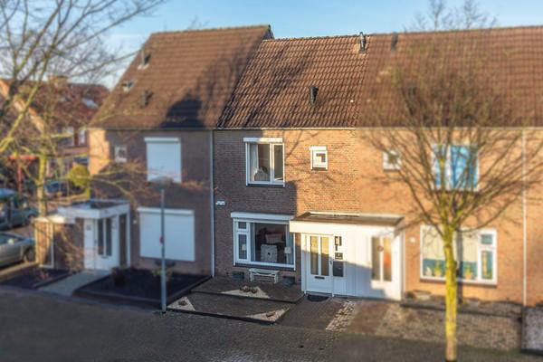 Haagbeuk 3 - Venlo