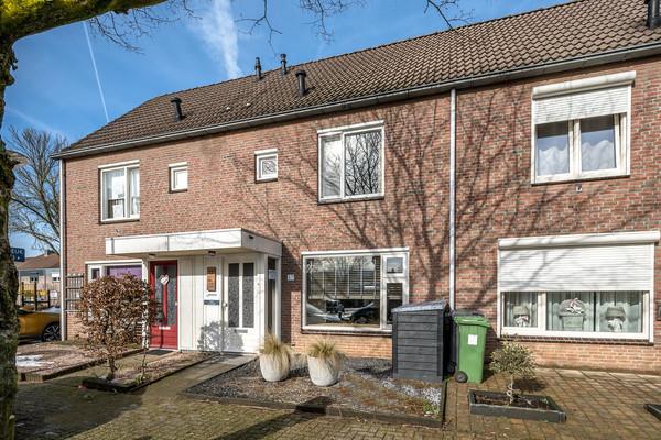Haagbeuk 57 - Venlo