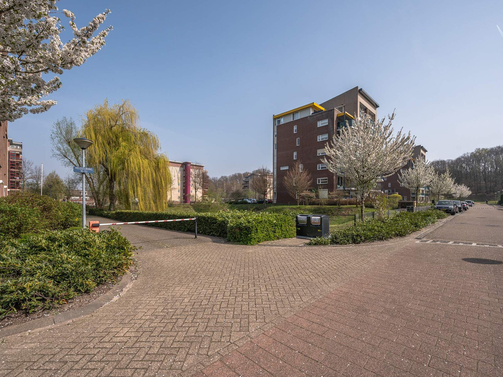 Veldzuring 37, Venlo